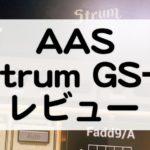 StrumGS2セール情報とレビュー